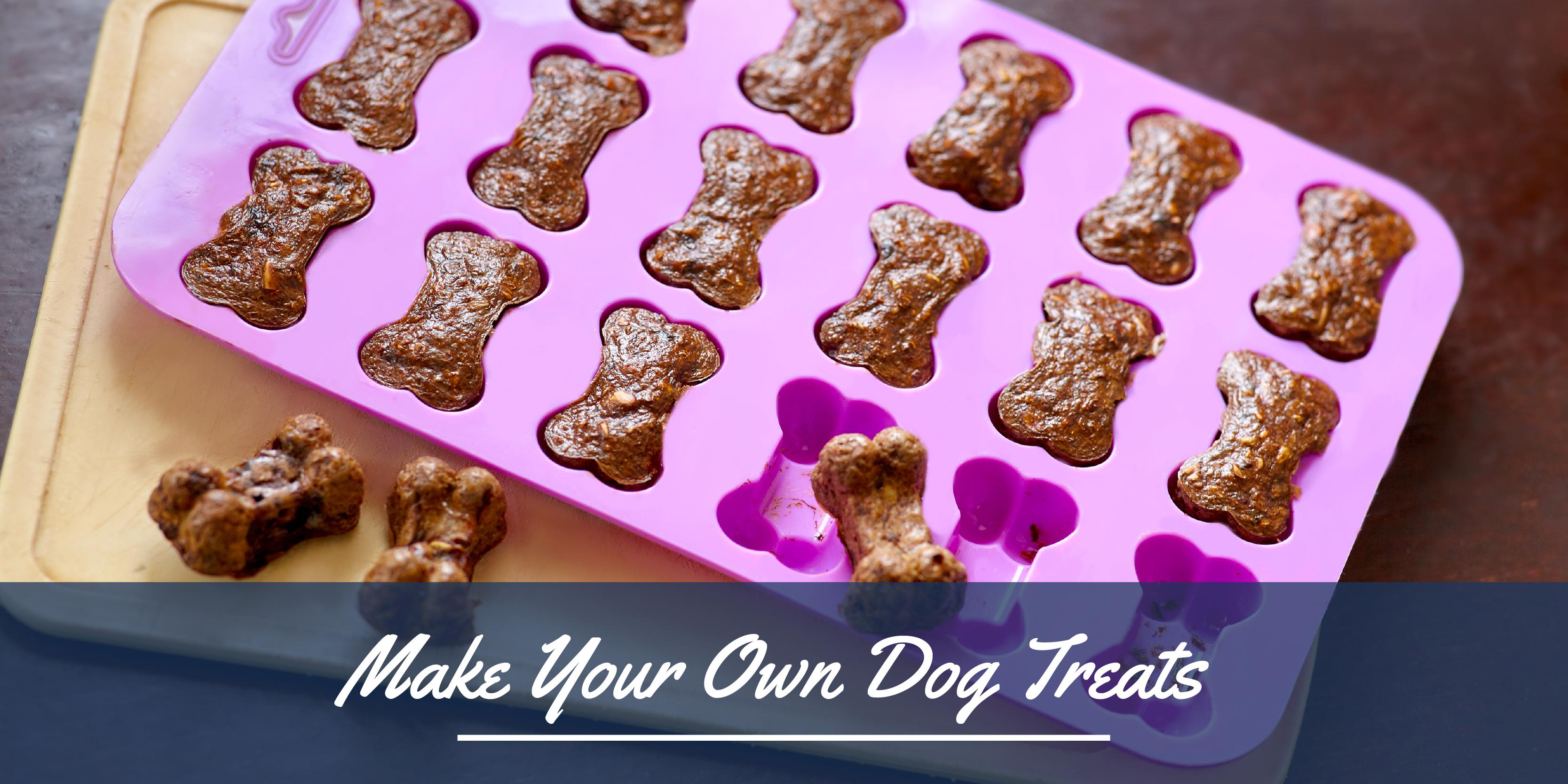 July blog header graphic - dog treats-01