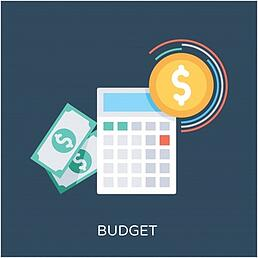 budget-flat-vector-icon_9206-60